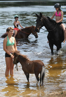 Members of the Sandown 4-H Club from Patch Wood Farm took their two horses and a miniature pony for a swim at Wason Pond in Chester.