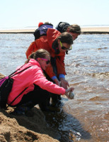 Chester Academy sixth graders marvel at a giant moon snail before placing it back into the Atlantic during a visit to the shore. Photo by Matt Rittenhouse